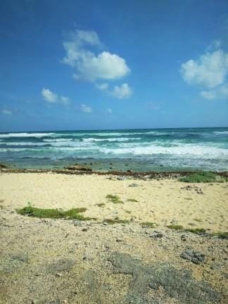 Cozumel Shore