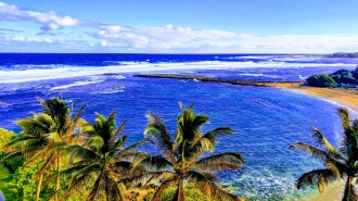 Turtle bay resort Oahu
