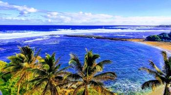 Turtle bay resort Oahu